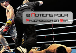 10 notions pour progresser en MMA