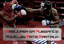 Améliorez votre puissance pour les arts martiaux