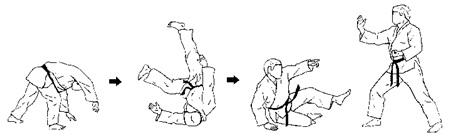 Mae ukemi jujitsu