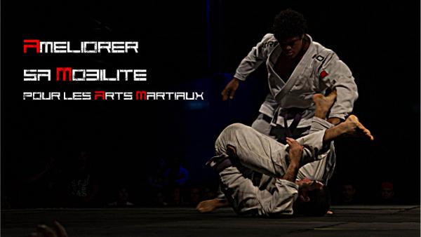 Améliorer sa mobilité pour les arts martiaux