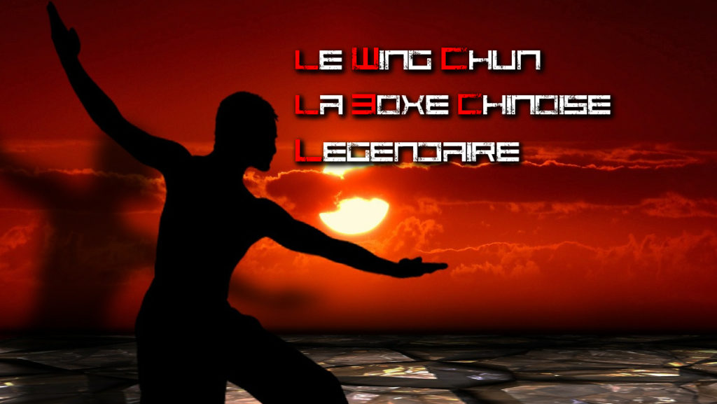 Le Wing Chun La Boxe Chinoise Legendaire