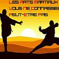 Les arts martiaux que vous ne connaissez peut-être pas