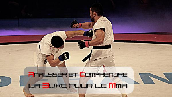 La boxe MMA