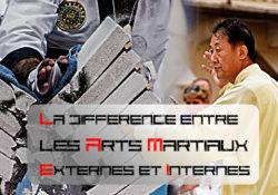 La différence entre les arts martiaux internes et externes
