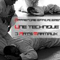 Apprendre une technique d'arts martiaux