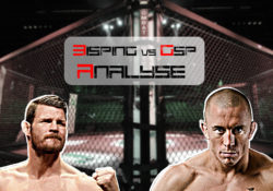 Bisping vs GSP Analyse