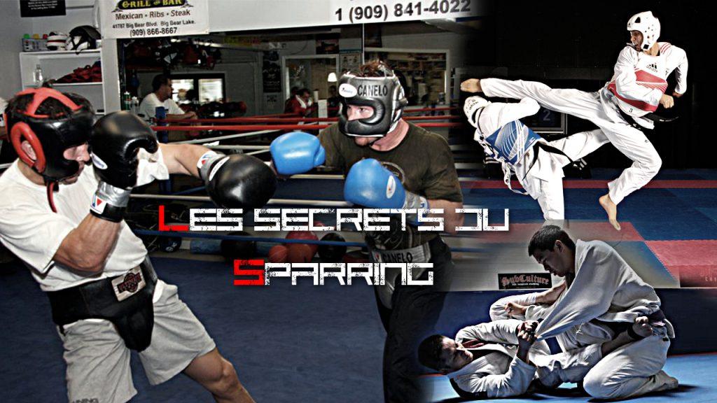 Apprendre à se battre - les secrets du sparring