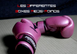 Les Differentes Boxes Pieds-Poings