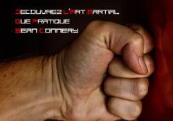 Decouvrez l'art martial que pratique Sean connery