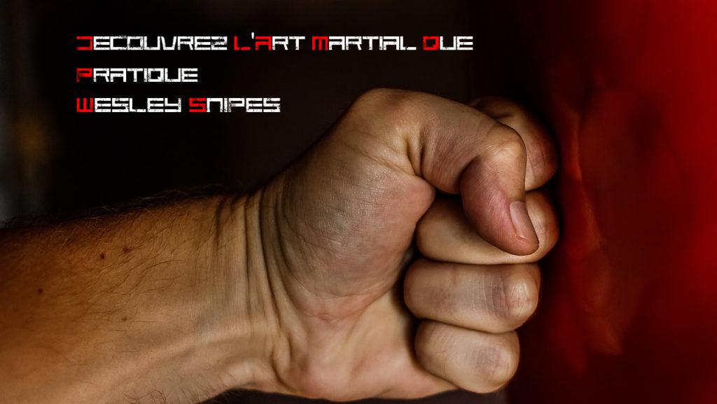 Decouvrez l'art martial que pratique Wesley Snipes