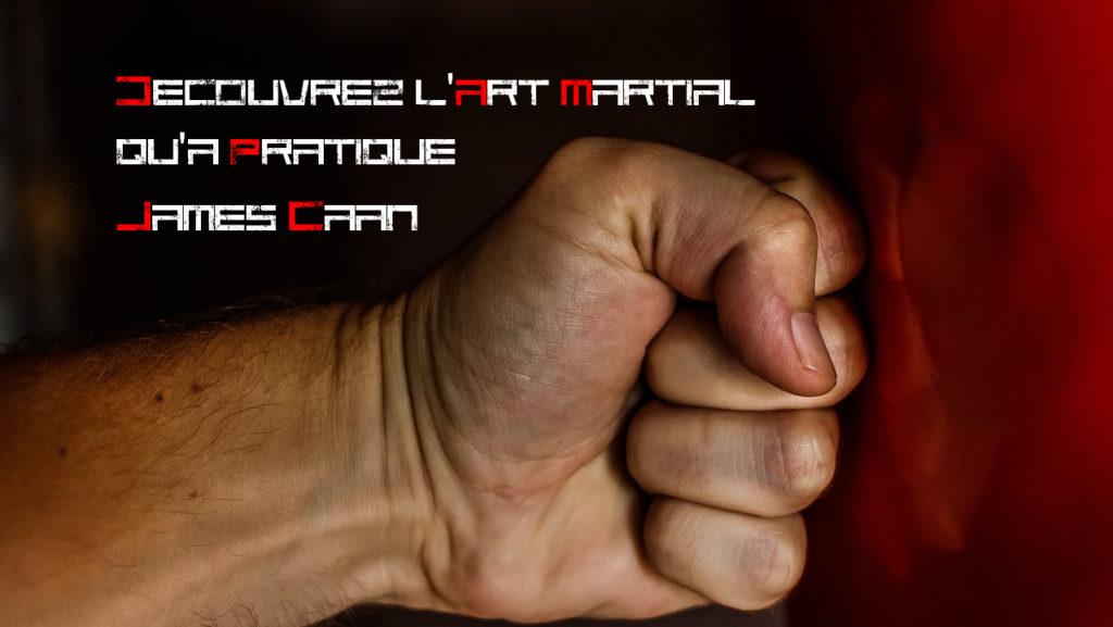 Decouvrez l'art martial qu'a pratique James Caan