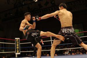 MMA / Boxe