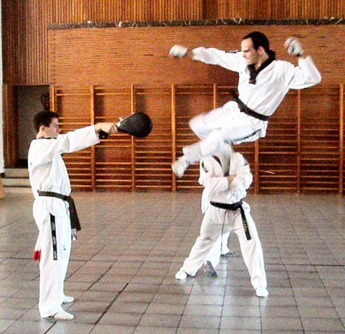 Taekwondo - Raquette de frappe