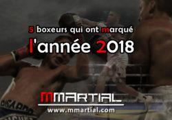 5 boxeurs qui ont marqué l'année 2018
