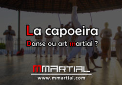 La capoeira : Danse ou art martial ?