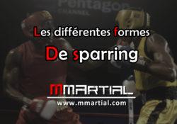 Les différentes formes de sparring afin de progresser en combat