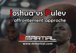 Mondiaux de boxe : l'affrontement Joshua - Pulev approche !