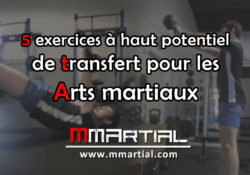 5 exercices à haut potentiel de transfert pour les arts martiaux